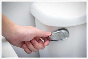 toilet flush
